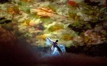 """""""Дама з камеліями"""". Хореографія та постановка – Аніко Рехвіашвілі, художник-постановник – Наталія Кучеря, ідея сценічного оформлення – Аніко Рехвіашвілі."""