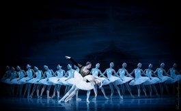 Гала-концерт артистів балету: хореографічні перлини та прем'єра