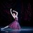 """У партії Марі Дюплессі в балеті """"Дама з камеліями"""" """"Дама з камеліями"""" на музику Л.В. Бетховена, І Брамса та інших композитоів."""